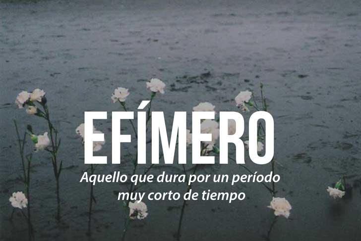 EFIMERO